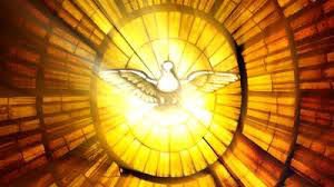 holy ghost dove of peace stained glass